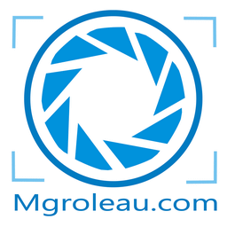Logobleu256