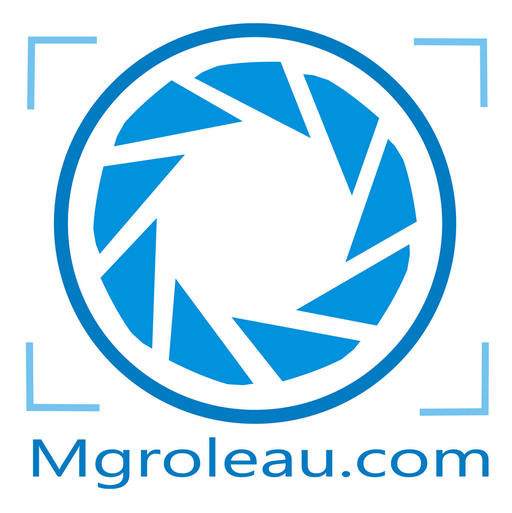 Logobleu512