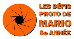 Logo_5e_annee_orange-600