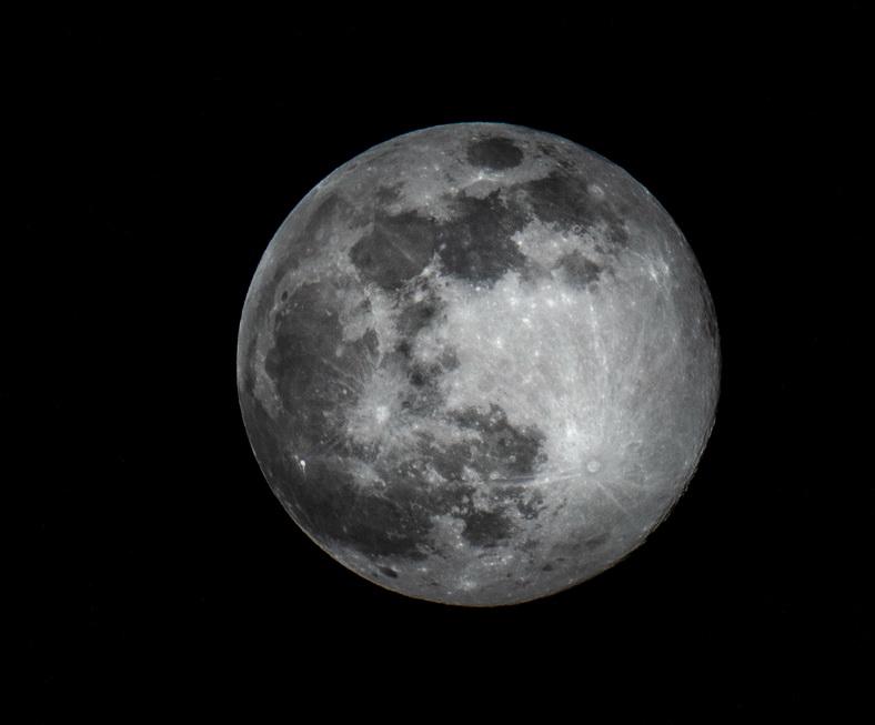 La Lune rose de printemps