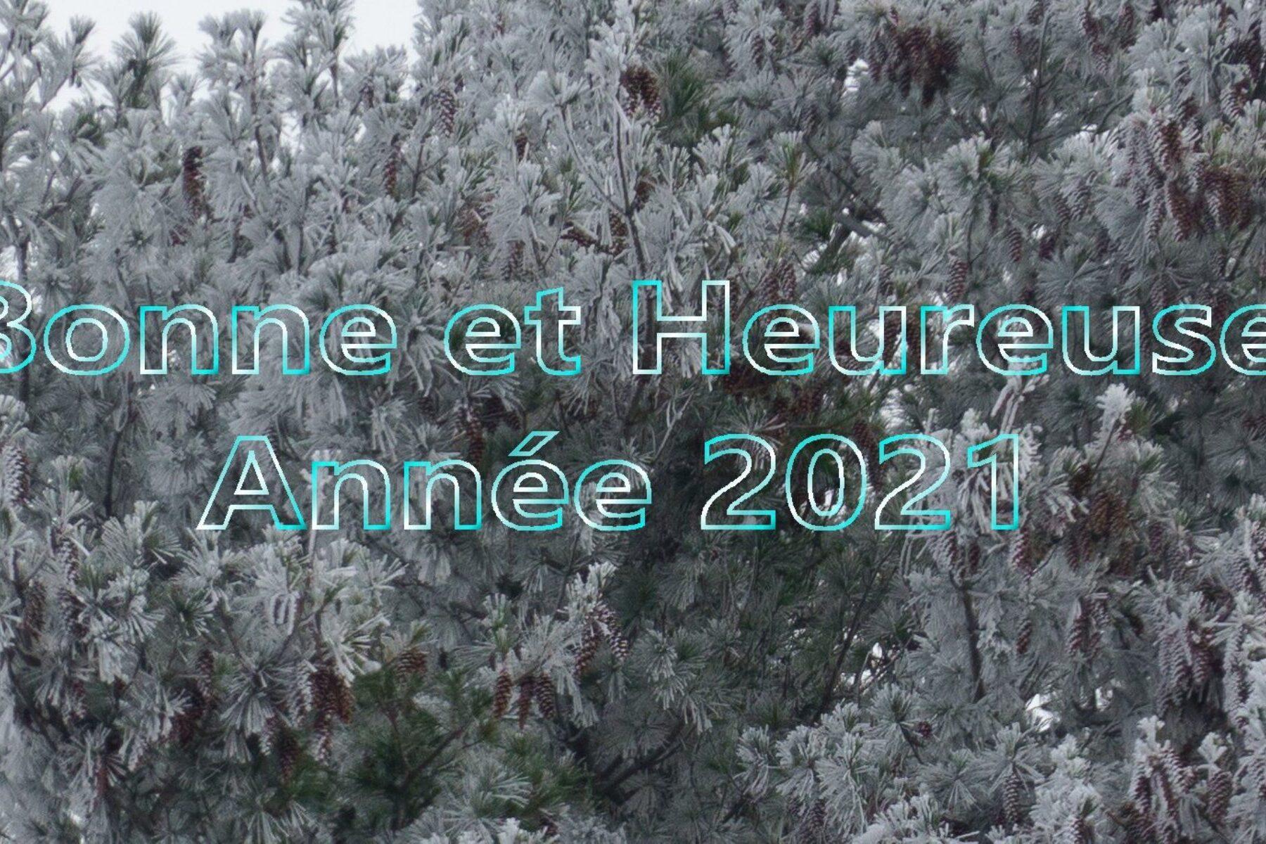 Bonne et Heureuse Année 2021!